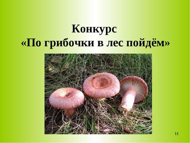 Конкурс «По грибочки в лес пойдём» *