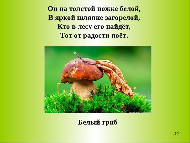 Он на толстой ножке белой, В яркой шляпке загорелой, Кто в лесу его найдёт, Т...
