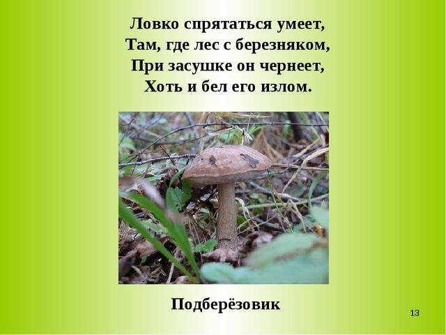 Ловко спрятаться умеет, Там, где лес с березняком, При засушке он чернеет, Хо...