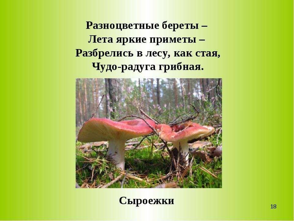 Разноцветные береты – Лета яркие приметы – Разбрелись в лесу, как стая, Чудо-...