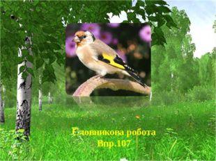Словникова робота Впр.107