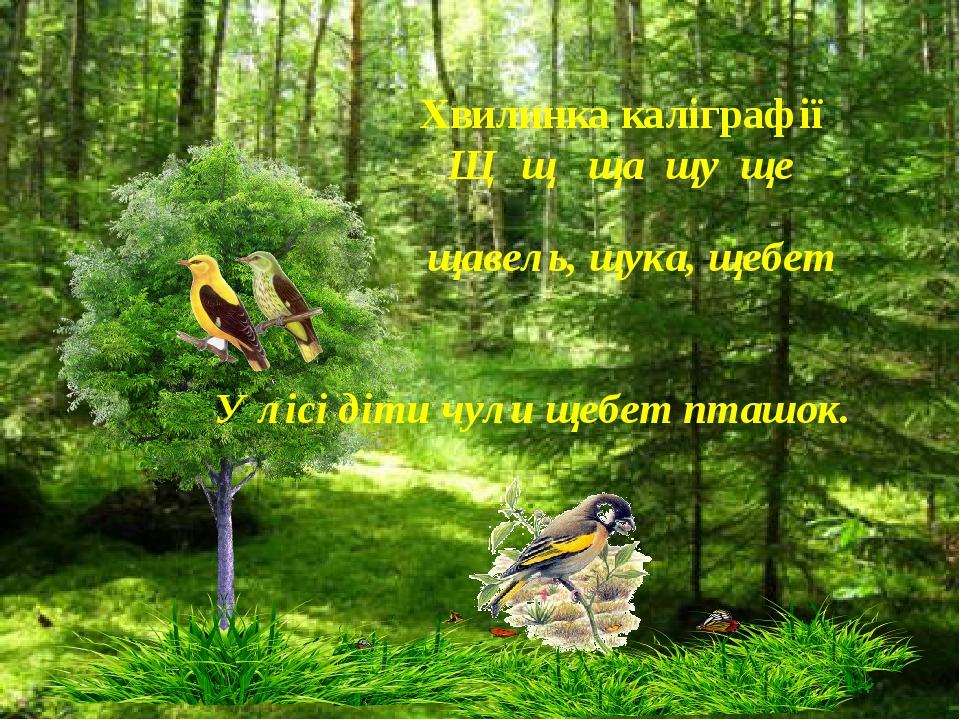 Хвилинка каліграфії Щ щ ща щу ще щавель, щука, щебет У лісі діти чули щебет...