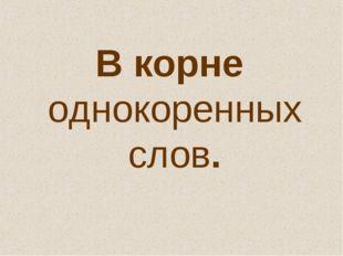 В корне однокоренных слов.