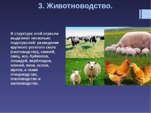 Свиноводство получило распространение в странах Азии, около половины выращива