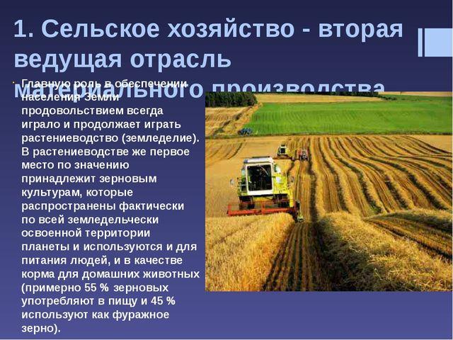 К числу зерновых культур относятся пшеница, рис, кукуруза (маис), ячмень, рож...