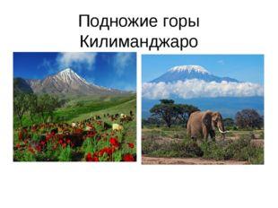 Подножие горы Килиманджаро