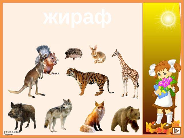 жираф © Фокина Лидия Петровна