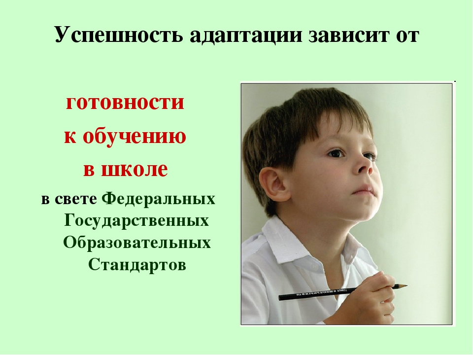 Успешность адаптации зависит от готовности к обучению в школе в свете Федерал...