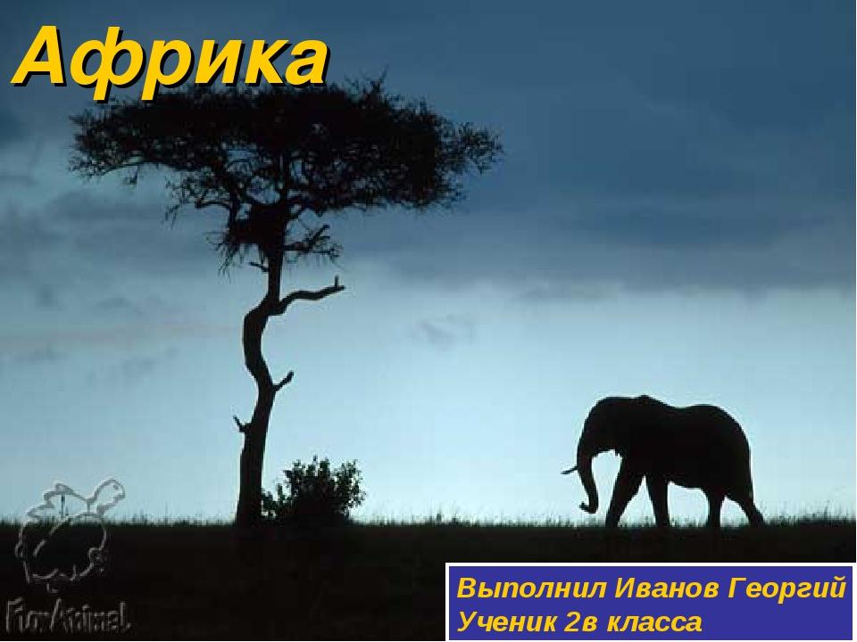 Африка Выполнил Иванов Георгий Ученик 2в класса