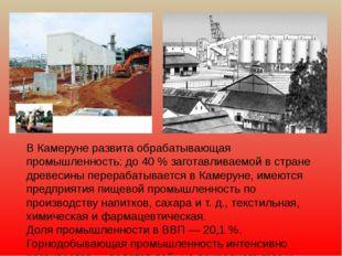 В Камеруне развита обрабатывающая промышленность: до 40 % заготавливаемой в с
