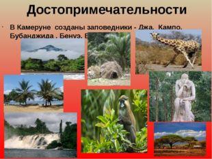 Достопримечательности ВКамеруне созданы заповедники - Джа, Кампо, Бубанджи