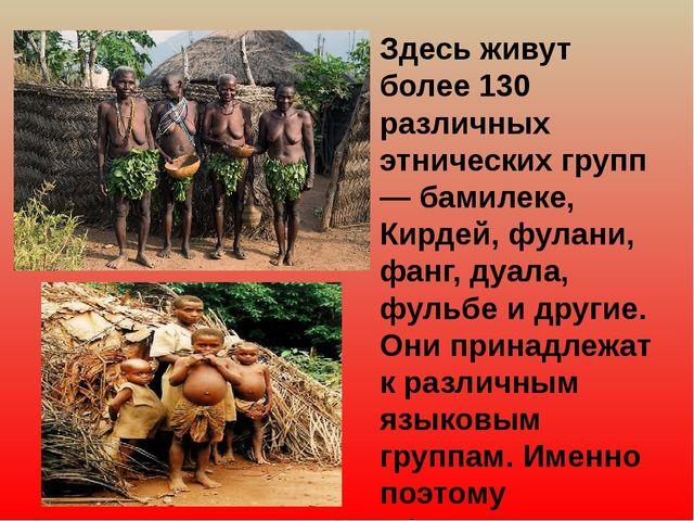 Здесь живут более 130 различных этнических групп — бамилеке, Кирдей, фулани,...