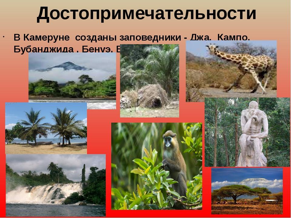 Достопримечательности ВКамеруне созданы заповедники - Джа, Кампо, Бубанджи...