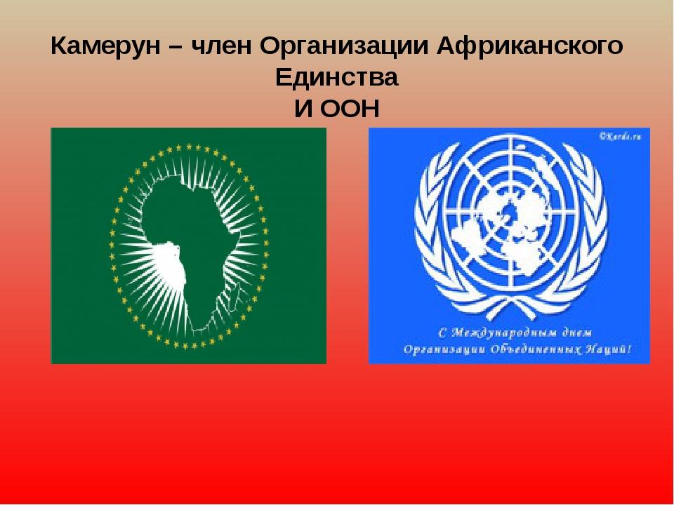 Камерун – член Организации Африканского Единства И ООН