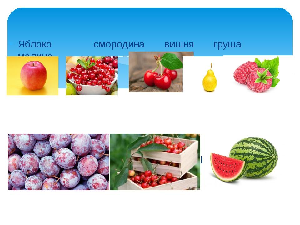 Яблоко смородина вишня груша малина Слива черешня арбуз