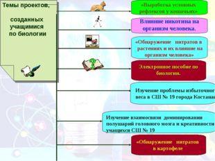 Темы проектов, созданных учащимися по биологии «Выработка условных рефлексов