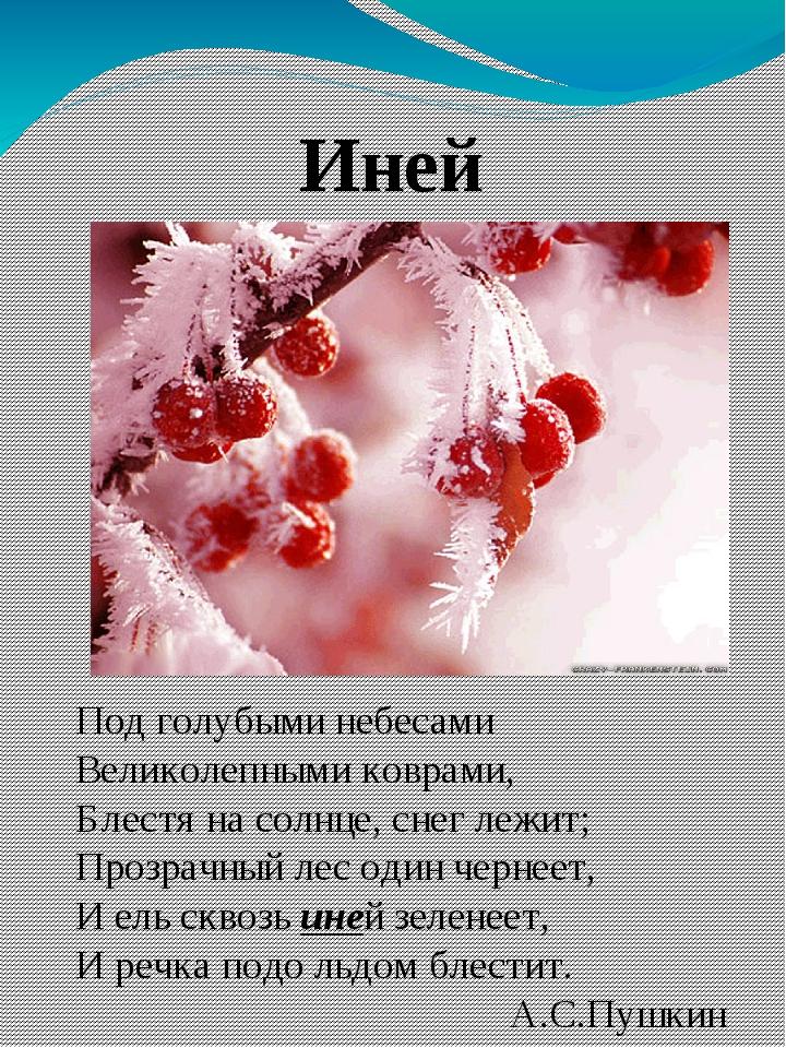 Иней Под голубыми небесами Великолепными коврами, Блестя на солнце, снег леж...
