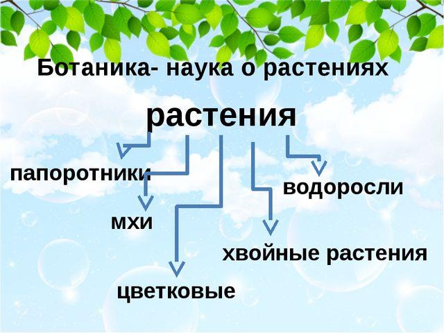 Ботаника- наука о растениях растения папоротники водоросли мхи хвойные расте...