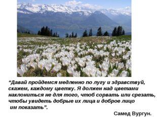 """""""Давай пройдемся медленно по лугу и здравствуй, скажем, каждому цветку. Я дол"""