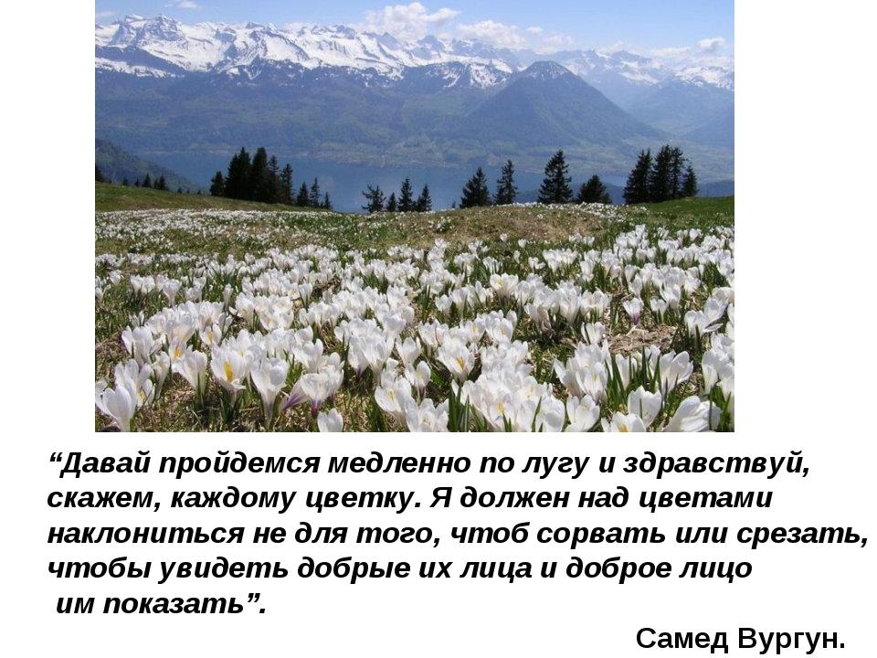 """""""Давай пройдемся медленно по лугу и здравствуй, скажем, каждому цветку. Я дол..."""