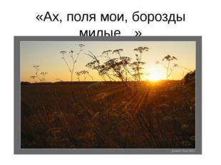 «Ах, поля мои, борозды милые…»