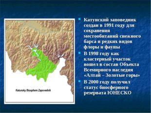 Катунский заповедник создан в 1991 году для сохранения местообитаний снежного