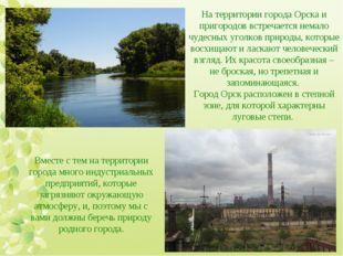 На территории города Орска и пригородов встречается немало чудесных уголков п