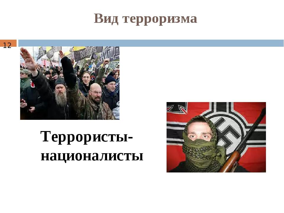 Вид терроризма Террористы-националисты