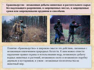 Браконьерство - незаконная добыча животных и растительного сырья без надлежащ