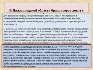 В Нижегородской области браконьеров ловят с помощью «беспилотников» Для выяв