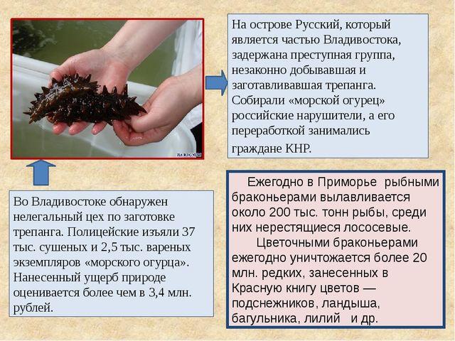На острове Русский, который является частью Владивостока, задержана преступна...