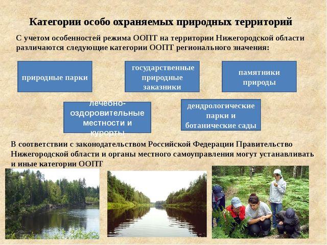В соответствии с законодательством Российской Федерации Правительство Нижего...