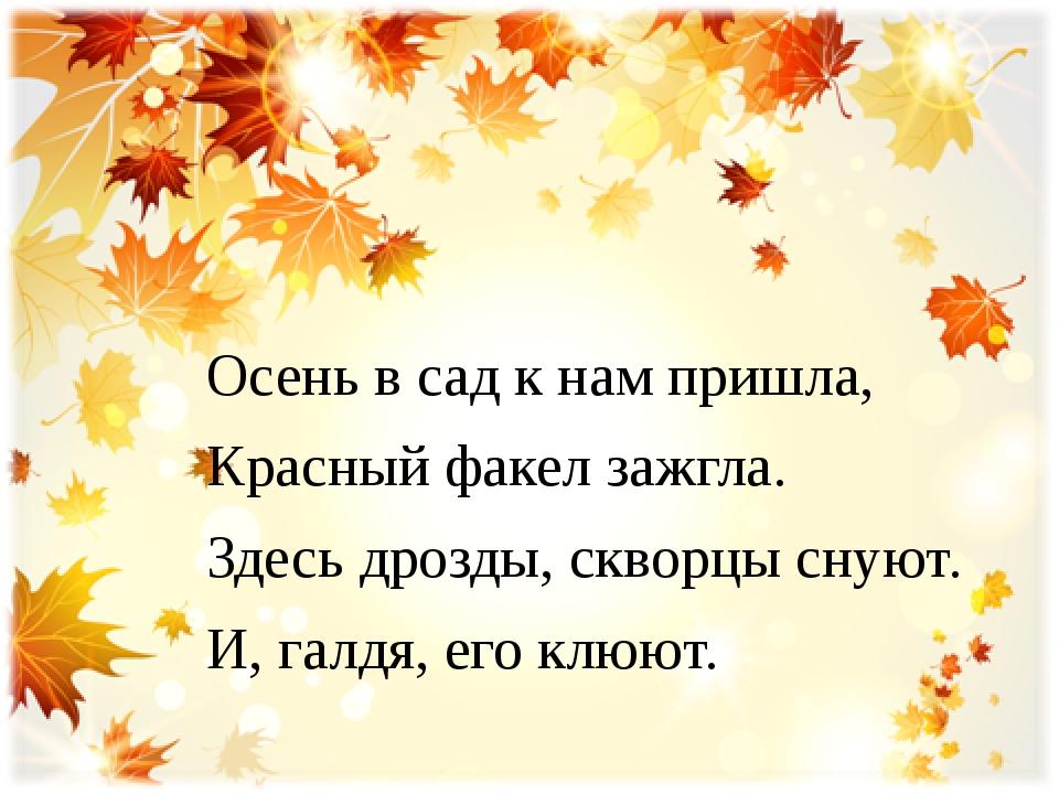 Осень в сад к нам пришла, Красный факел зажгла. Здесь дрозды, скворцы снуют....