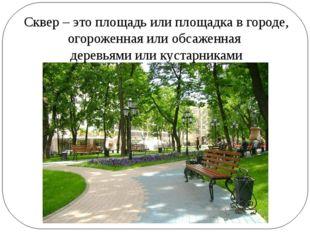 Сквер – это площадь или площадка в городе, огороженная или обсаженная деревья