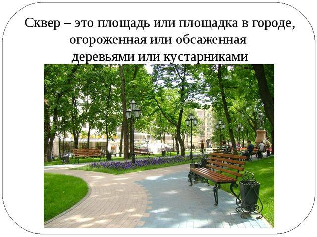 Сквер – это площадь или площадка в городе, огороженная или обсаженная деревья...