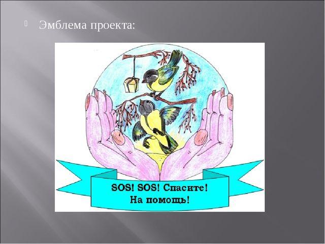 Эмблема проекта: