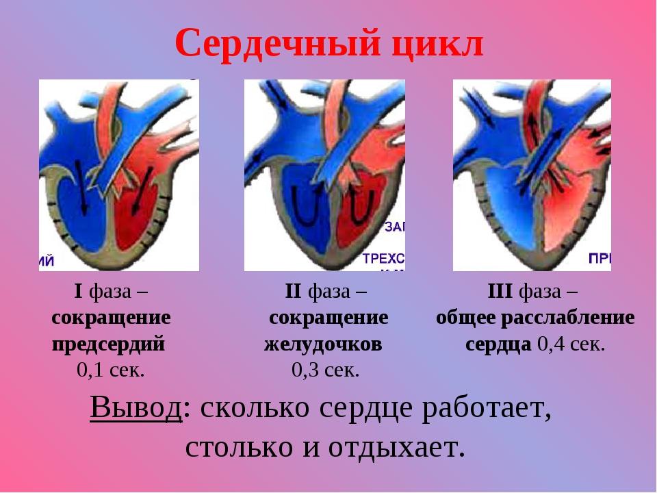 Сердечный цикл I фаза – сокращение предсердий 0,1 сек. II фаза – сокращение ж...