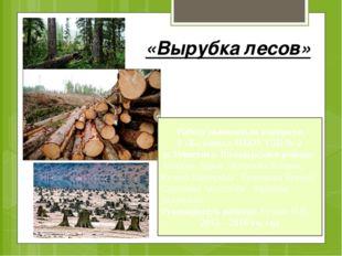 «Вырубка лесов» Работу выполнили учащиеся 9 «Б» класса МБОУ СШ № 2 п. Решетих