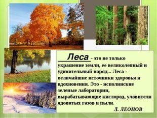 Леса - это не только украшение земли, ее великолепный и удивительный наряд..