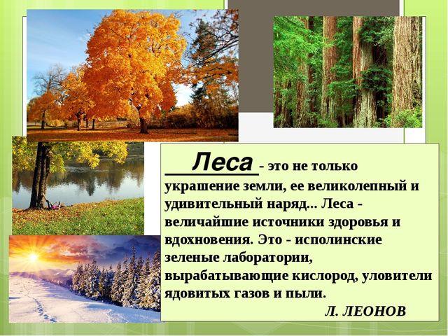 Леса - это не только украшение земли, ее великолепный и удивительный наряд.....