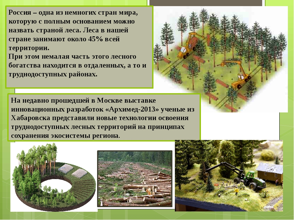 Россия – одна из немногих стран мира, которую с полным основанием можно назва...