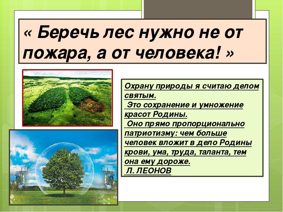 «Беречь лес нужно не от пожара, аот человека!» Охрану природы я считаю дел...