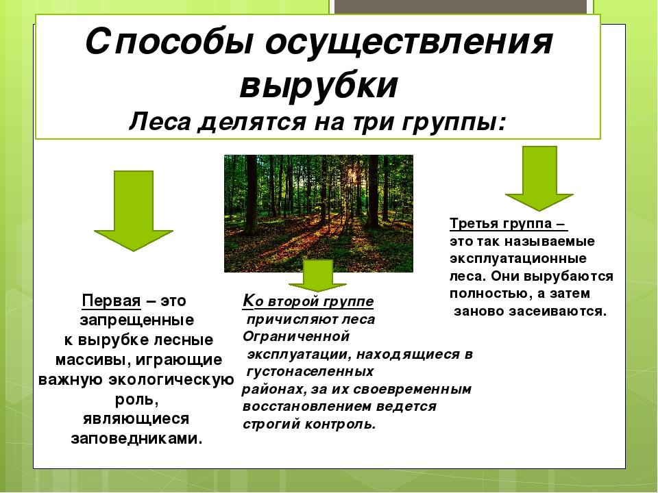 Способы осуществления вырубки Леса делятся на три группы: Первая – это запрещ...