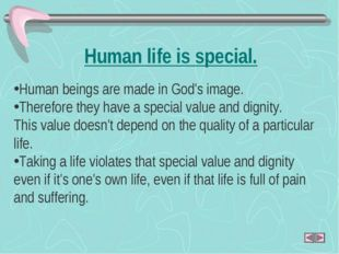 Human life is special. Human beings are made in God's image. Therefore they