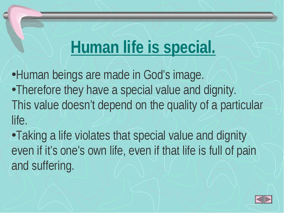 Human life is special. Human beings are made in God's image. Therefore they...