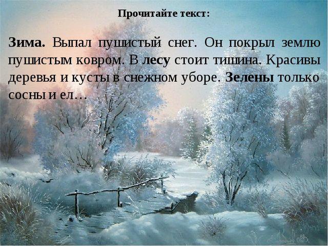 Прочитайте текст: Зима. Выпал пушистый снег. Он покрыл землю пушистым ковром...