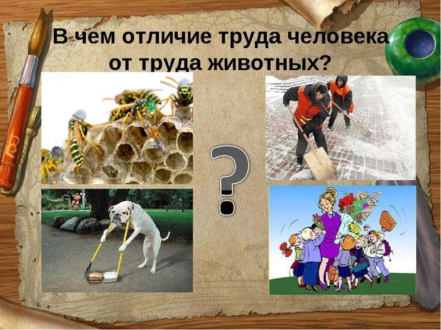 В чем отличие труда человека от труда животных?