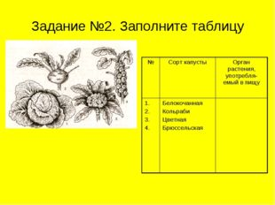Задание №2. Заполните таблицу №Сорт капустыОрган растения, употребля-емый в