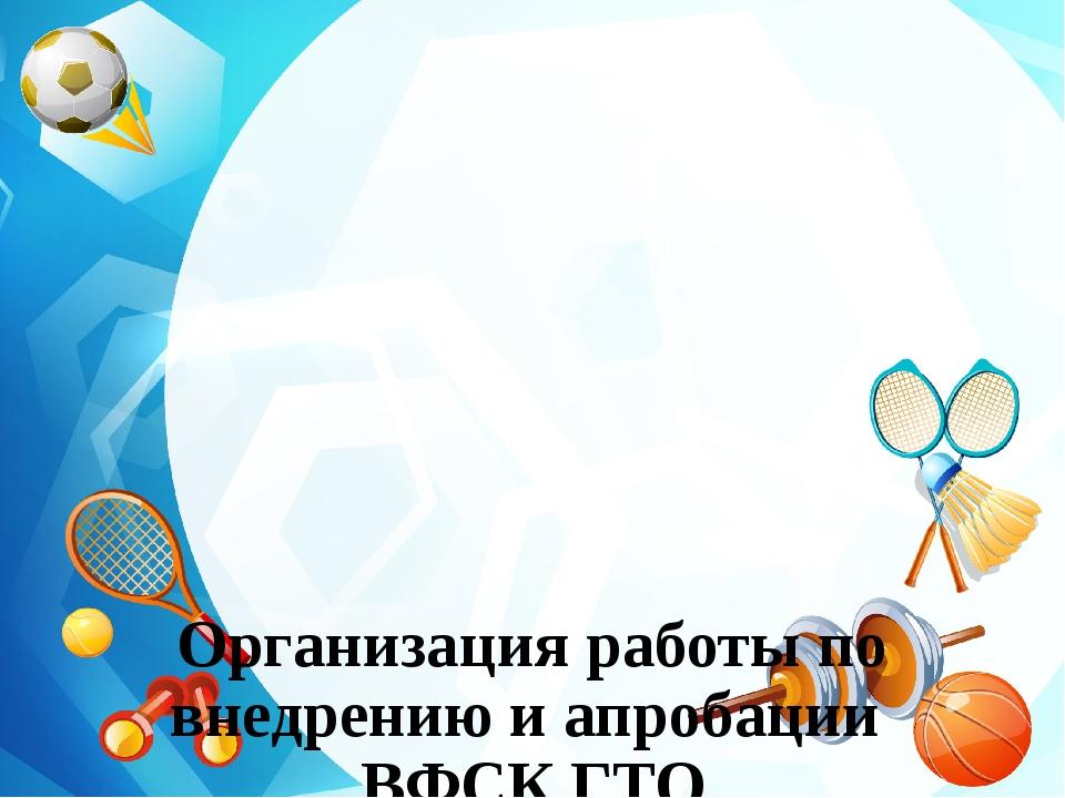 Организация работы по внедрению и апробации ВФСК ГТО в МБОУ «СОШ№2» в 2014-2...