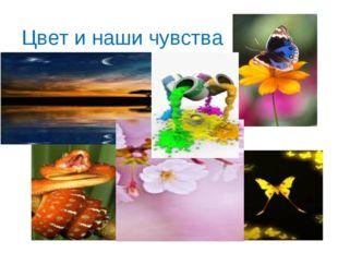 Цвет и наши чувства